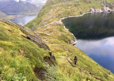 Bergkam Lofoten