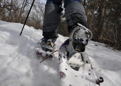 Sneeuwschoen